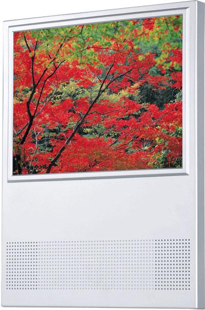 Écrans LCD à mémoire