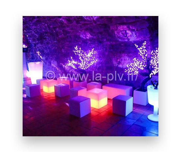 Articles lumineux décoration